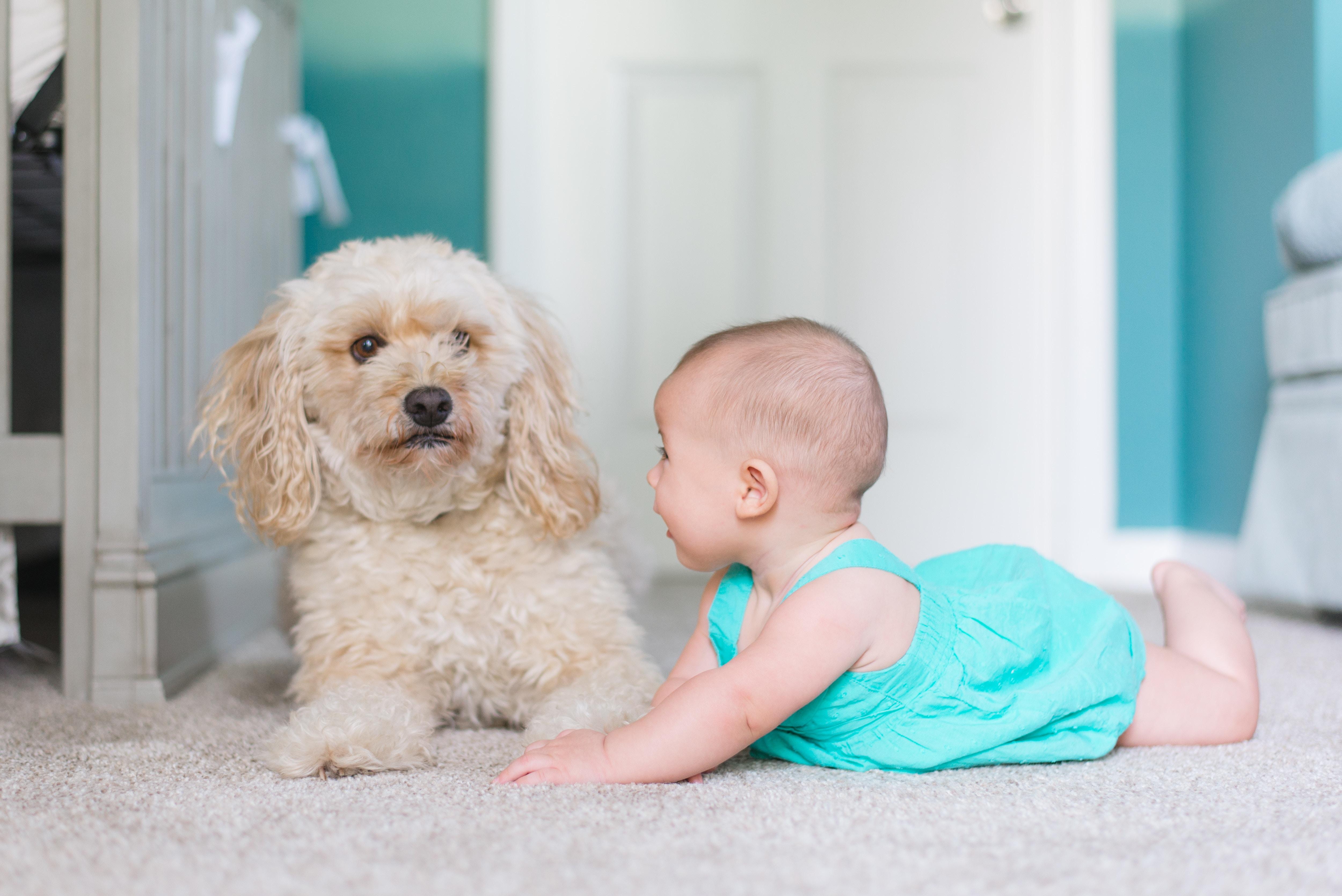 картинка про развитие речи малыша