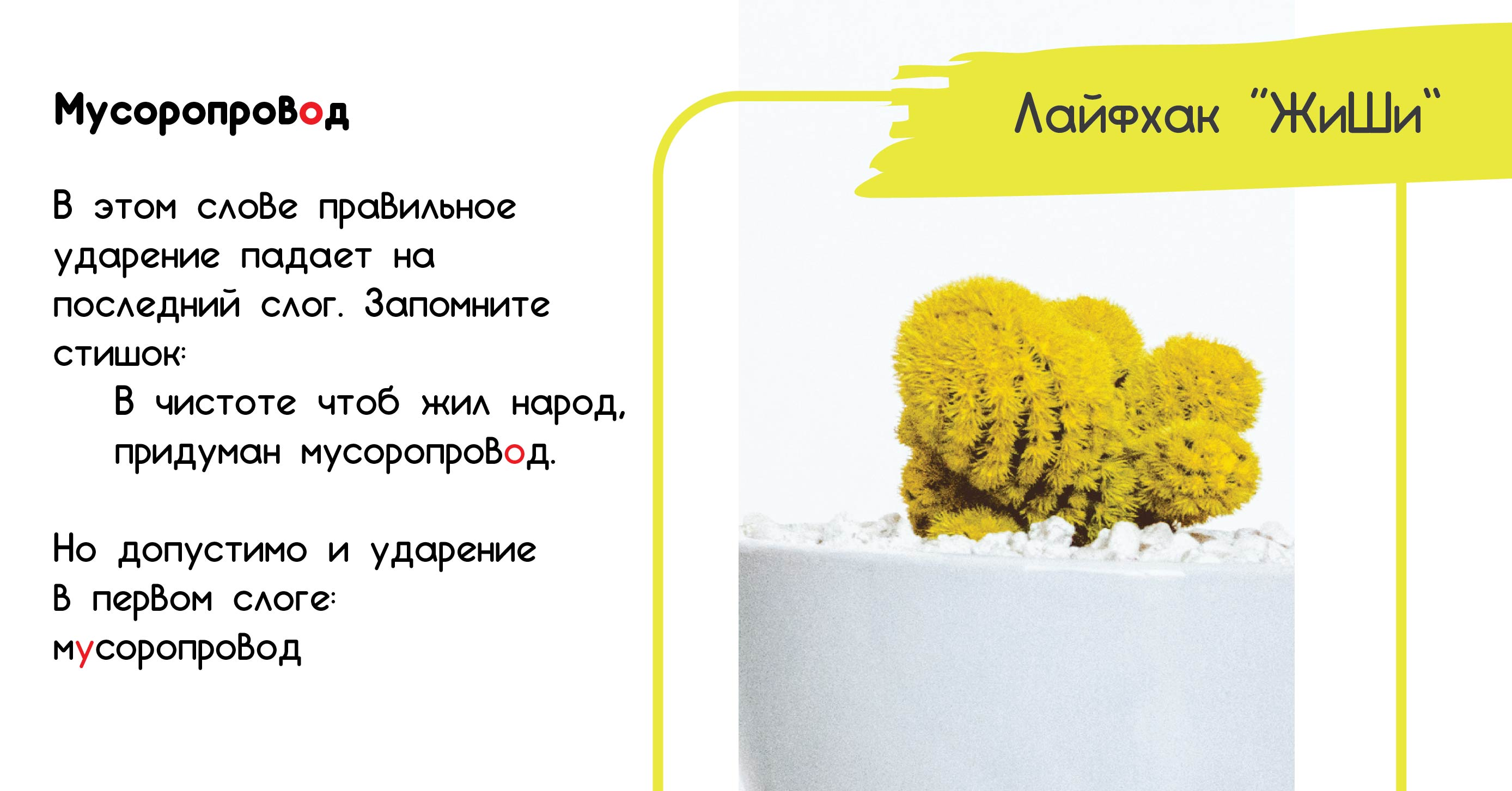 картинка правила русского языка ударение в слове водопровод
