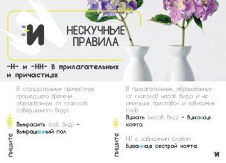 картинка русский язык буква н в прилагательных