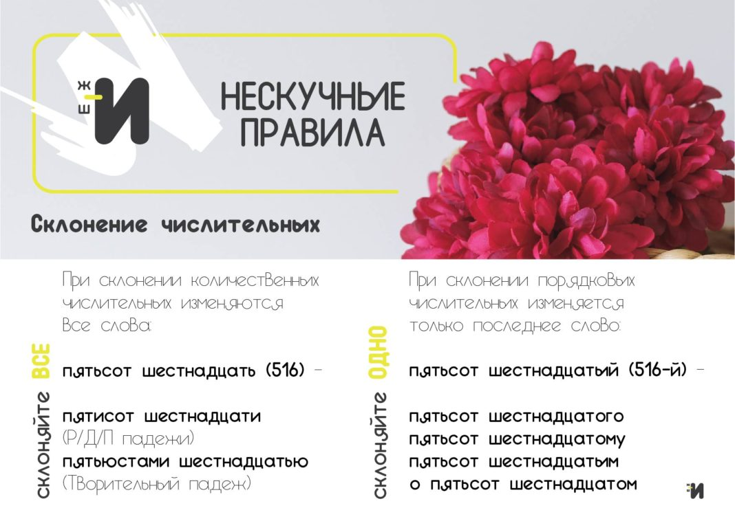 картинка русский язык склонение числительных
